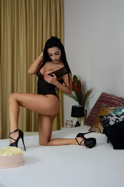 What's New Escort in Clearwater Florida